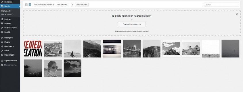 Media Overzicht Wordpress